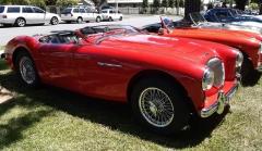 1956 Austin Healey 100/4 - Malcolm-Noad