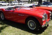 1956 Austin Healey 100-4 - Malcolm Noad